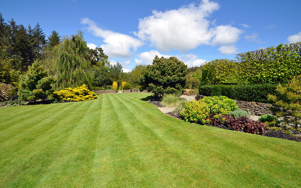 Garden design and planting Wirral